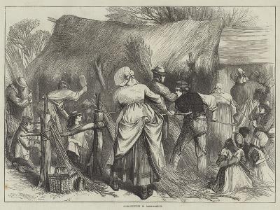 Osier-Stripping in Warwickshire--Giclee Print