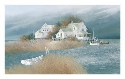 Osprey Point-Albert Swayhoover-Art Print