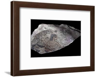 Ostracon with painting of a herdsman or butcher, Ancient Egypt, New Kingdom, c1570-1070 BC-Werner Forman-Framed Photographic Print