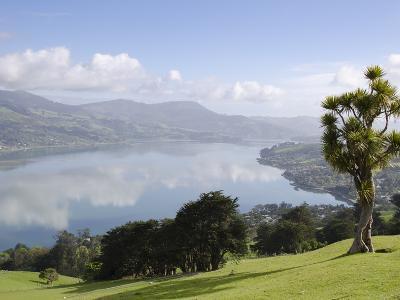 Otago Harbour, Otago Peninsula, Otago, South Island, New Zealand, Pacific-Michael Snell-Photographic Print