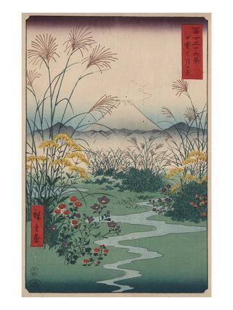 https://imgc.artprintimages.com/img/print/otsuki-fields-in-kai-province_u-l-pf35a40.jpg?artPerspective=n