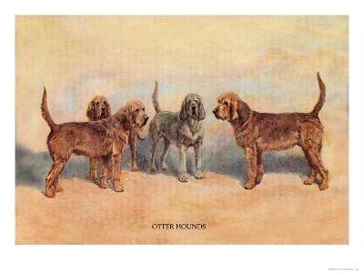 Otter Hounds-Thomas Ivester Llyod-Art Print