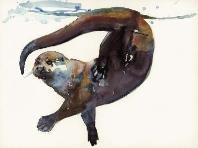 Otter Study II -'Talisker'-Mark Adlington-Giclee Print
