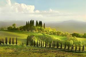 Coreografia Toscana--Choreography Tuscany by Ottini Graziano