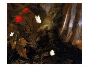 Underbrush with Animals, Uffizi Gallery, Florence by Otto Marseus Van Schrieck