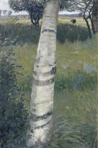 Birch Tree in Bloomy Landscape, 1903 by Otto Mueller