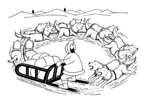 Eskimo on dog sled; the dogs are running around in a circle and are coming? - New Yorker Cartoon by Otto Soglow