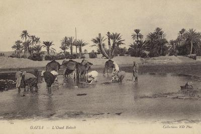 Oued Baiech at Gafsa in Tunisia--Photographic Print