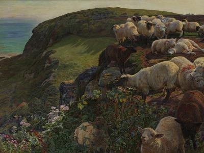 Our English Coasts, 1852 ('Strayed Sheep')-William Holman Hunt-Giclee Print