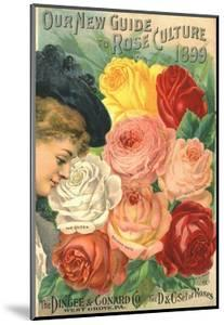 Our New Guide to Rose Culture, 1899 Catalog Cover for the Dingee and Conard Co.