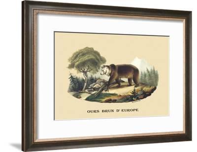 Ours Brun d'Europe-E.f. Noel-Framed Art Print