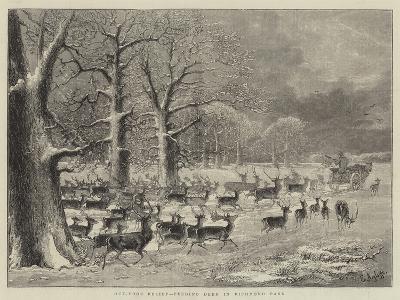 Out-Door Relief, Feeding Deer in Richmond Park--Giclee Print
