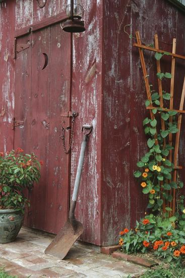 Outhouse Garden Shed Nasturtium Tropaeoium Majus and Thunbergia Lemon Star-Richard and Susan Day-Photographic Print