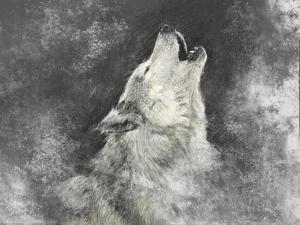 Wolf, Handmade Illustration on Grey Background by outsiderzone