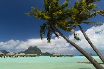 Over-The-Water Bungalows at a Tropical Resort with Clear Turquoise Water and Wind-Blown Palms-Sergio Pitamitz-Photographic Print