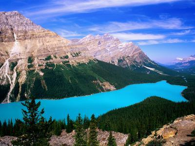 Overhead of Peyto Lake and Mountains, Summer, Banff National Park, Canada-David Tomlinson-Photographic Print
