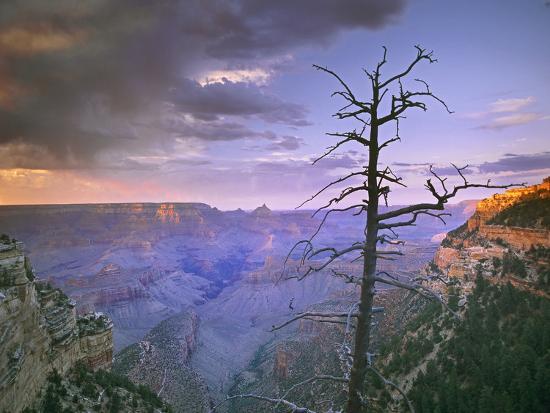 Overlook Near Grandview Point, Grand Canyon National Park, Arizona, Usa-Tim Fitzharris-Photographic Print