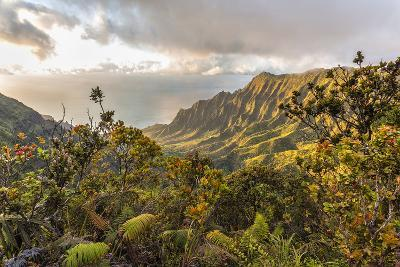 Overlooking the Kalalau Valley Right before Sunset-Andrew Shoemaker-Photographic Print