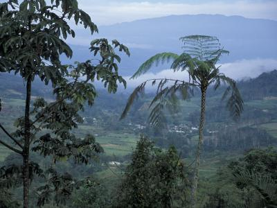 Overlooking the Lush Turrialba Area, Rancho Naturalista, Costa Rica-Cindy Miller Hopkins-Photographic Print