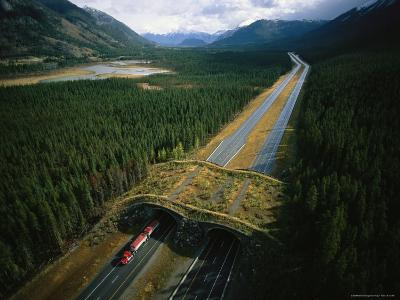 Overpass for Grizzlies and Other Wildlife Spans an Alberta Highway-Joel Sartore-Photographic Print