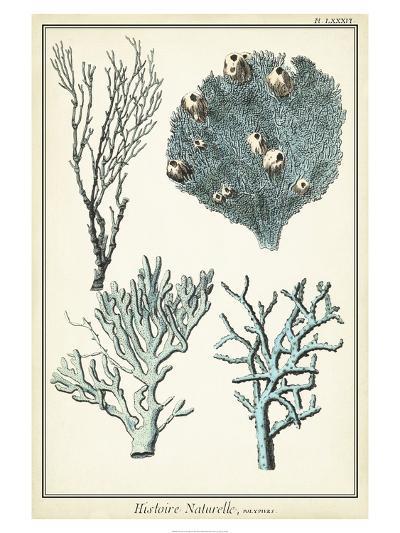 Oversize Coral Species II--Art Print