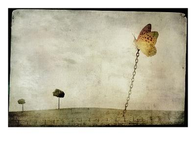 Oversized Butterfly Chained to Ground-Mia Friedrich-Photographic Print
