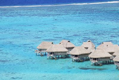 Overwater Bungalows of Sofitel Hotel, Moorea, Society Islands, French Polynesia (Pr)-Ian Trower-Photographic Print