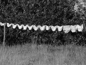Underwear Hanging to Dry by Owen Franken