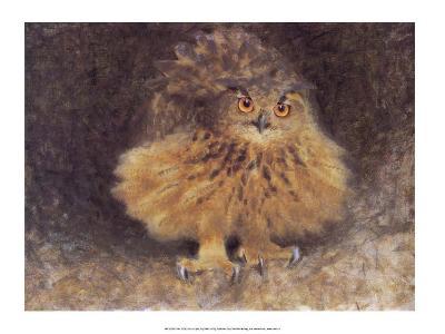 Owl, 1905-Bruno Liljefors-Art Print