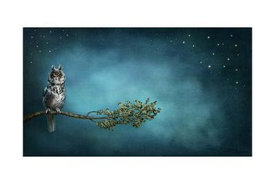 Owl Bird-egal-Art Print