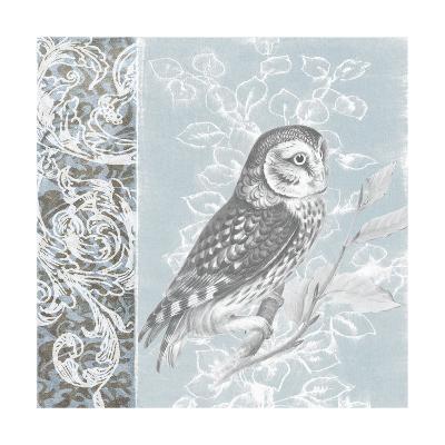 Owl Filigree II-Studio W-Art Print