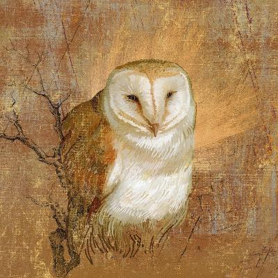 Owl in the wood--Giclee Print