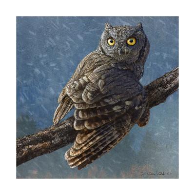 Owl in Winter I-Chris Vest-Art Print