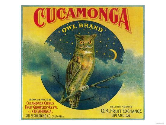 Owl Orange Label - Cucamonga, CA-Lantern Press-Art Print