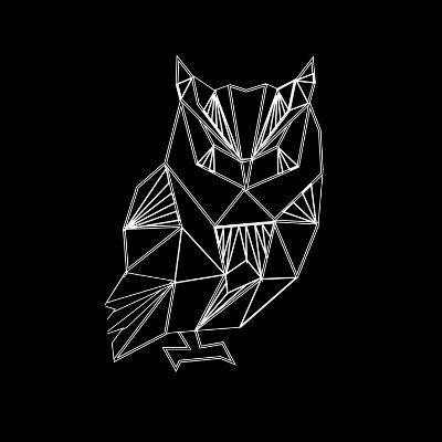 Owl Polygon-Lisa Kroll-Art Print