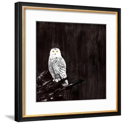 Owl-Paul Ngo-Framed Giclee Print