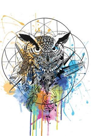 https://imgc.artprintimages.com/img/print/owl_u-l-q1gubvb0.jpg?p=0
