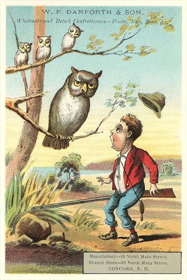 Owls, Shocked Hunter--Art Print