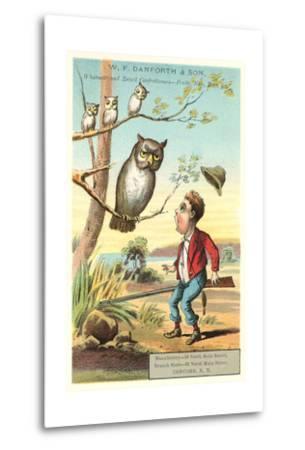 Owls, Shocked Hunter