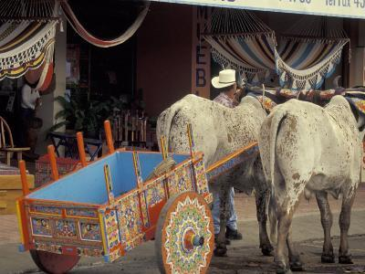 Ox Cart in Artesan Town of Sarchi, Costa Rica-Stuart Westmoreland-Photographic Print