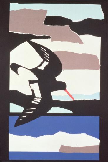 Oystercatcher-John Wallington-Giclee Print