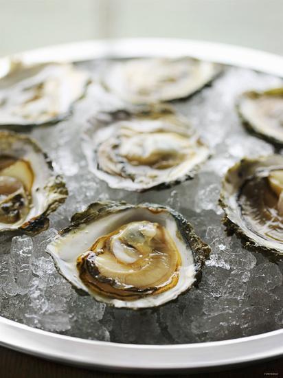 Oysters on Ice-Matilda Lindeblad-Photographic Print