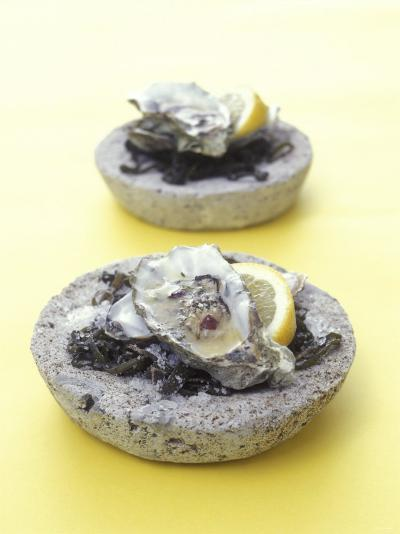 Oysters with Seaweed in Stone Bowl-Alexander Van Berge-Photographic Print