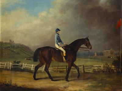 Mr. Hindley's Brown Filly 'Rosina' by 'Romulus' Ridden by the Owner on Lincoln Race Course by P. Ewbank