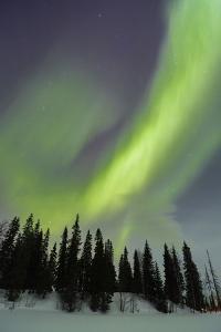 Northern Lights in Winter, Aurora Borealis, PyhŠ-Luosto National Park, Luosto, Lapland, Finland by P. Kaczynski