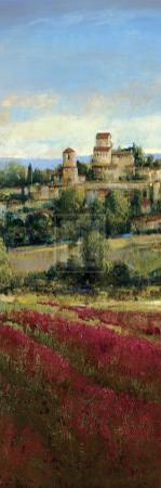 Tuscan Harvest I by P^ Patrick