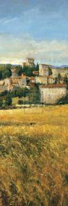 Tuscan Harvest II by P. Patrick