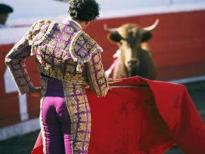 Bullfighter Holds his Red Cape Before a Bull by Pablo Corral Vega