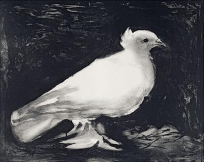 Dove, 1949