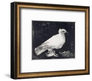Dove, 1949 by Pablo Picasso